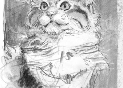 Pencil drawing of Pulina by Lita Judge
