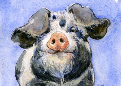 Pig by Lita Judge